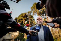 OPEC unable to handle current situation solely: Zanganeh