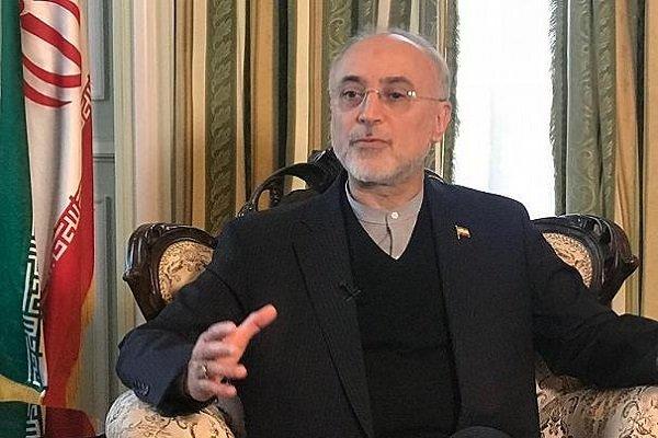 صالحي: الاتحاد الأوروبي حدّد موعدا نهائيا لتنفيذ التزاماته بشأن الاتفاق النووي