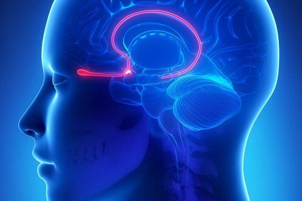 درمان پارکینسون و تشنجها با قرار دادن الکترود در مغز