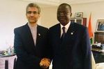 Iranian envoy hands invitation letter to Ivory Coast's head of Senate