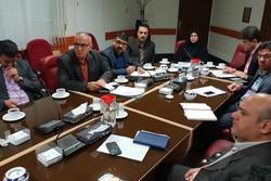 ۴۰ هکتار طرح گلخانه ای در استان قزوین عملیاتی می شود