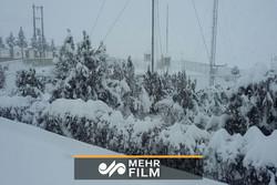 فیلمی از برف و کولاک شدید در دماوند