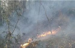 وقوع آتش سوزی درعرصه های منابع طبیعی چهارمحال وبختیاری کاهش یافت