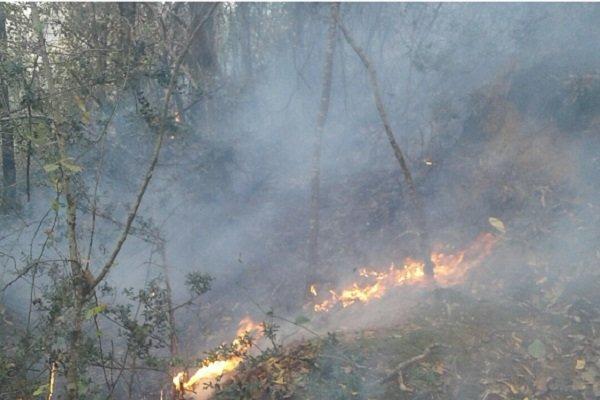 آماده باش۱۴ ایستگاه آتشنشانی در رشت/شهروندان آتش روشن نکنند