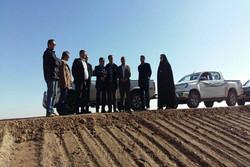 عملیات کاشت «آتریپلکس» در ۴۰۰هکتار از مراتع استان تهران آغاز شد