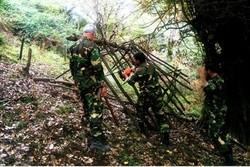 رفع تصرف ۱۶ هکتار از اراضی ملی در شهرستان ماسال