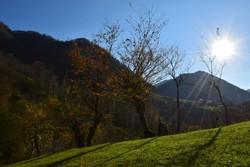 """الخريف في منعطف """"حيران"""" الجبلي /صور"""