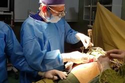 مشکلات روشهای فیزیکی درمان چاقی/از کدام روش جایگزین استفاده کنیم