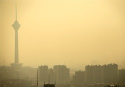 'Responsible bodies blame-shifting keeps air pollution alive'