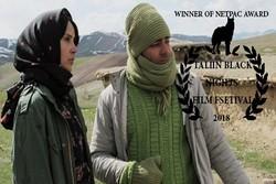 'Kejal' wins NETPAC award at Estonia's Tallinn Black Nights Filmfest.
