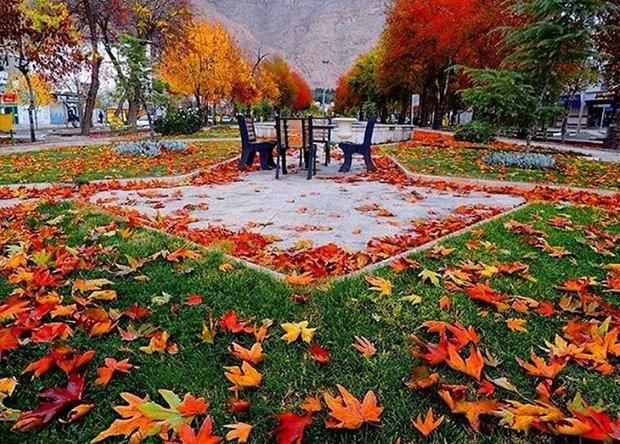 برگهای پاییزی بلوار شاهد و طاقبستان جمعآوری نشده است