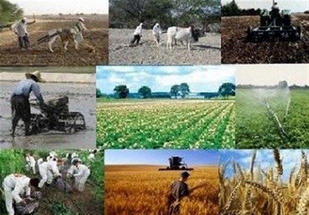 اصلاح و حفاظت خاک سالانه ۵۰۰ هزار هکتار از اراضی کشاورزی
