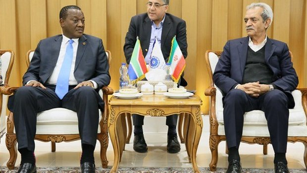 'Iran able to help S. Africa tackle energy challenges'