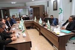 اجرای طرح احیا فضای سبز بلوار جمهوری کرمان کلید خورد