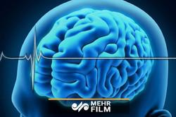چگونه مغزمان میتواند رازهایمان را برملا کند؟