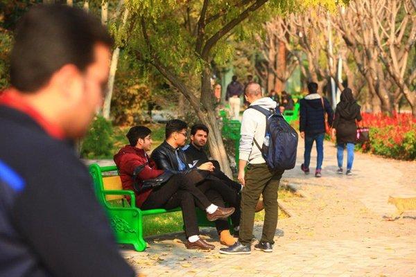 تأکید سرپرست صندوق رفاه دانشجویان بر عدالت محوری در توزیع امکانات