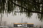 در انتظار سردترین روز یک ماه اخیر/ از فردا تهران آلوده میشود