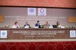 پیمان مهاجرتی سازمانملل به تصویب رسید