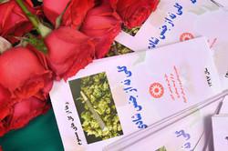 کمپین پیشگیری از مصرف مخدر گل با رویکرد سلامتنگر در مرکزی تشکیل می شود
