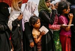 شرایط روهینگیا نگران کننده است