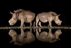 2018 National Geographic Fotoğraf Yarışması sonuçlandı