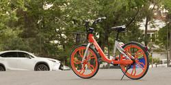 Bike-sharing scheme gets underway in Tehran