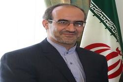 تبادل تجاری تهران و کوناکری ۶ میلیون دلار است/ پتروشیمی ایران بازار خوبی در گینه دارد