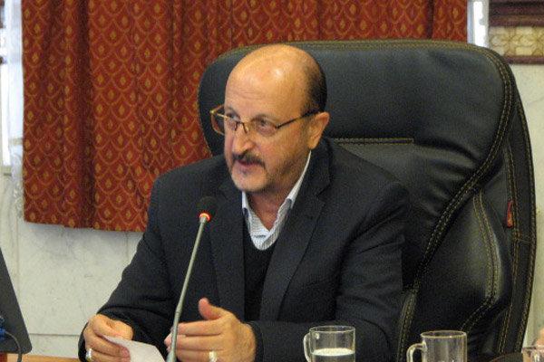 شرایط برای ایجاد صندوق زیتون در استان قزوین فراهم است