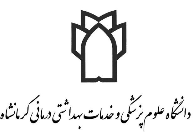 تشکیل کارگروه خانه مشارکتهای مردمی سلامت در کرمانشاه