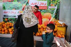 لزوم اختصاص اعتبار برای اجرای برنامه ارتقای سلامت محصولات کشاورزی