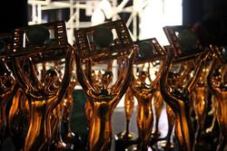 12th Cinema Vérité names winners