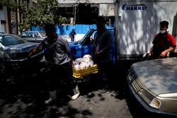 جهش بیسابقه نرخ مرغ در بازار/قیمت از ۱۴ هزار تومان عبور کرد