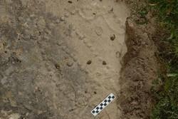 Azerbaycan'da tam 4.000 yıllık bir kutu oyunu bulundu