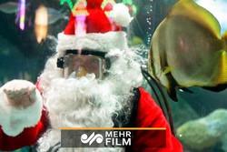 Noel Baba'dan akvaryumda gösteri