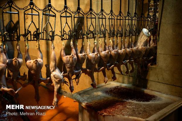 مرغ؛ از کشتارگاه تا ویترین