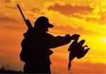 آنفلوانزای امسال به پرندگان مربوط نیست/مجوزهای شکار درمراحل نهایی
