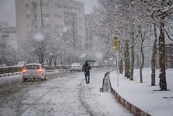 Snowfall blankets Sanandaj in W Iran