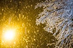 بارش ۱۴ سانتیمتری برف در خلخال/بارندگیها همچنان ادامه دارد
