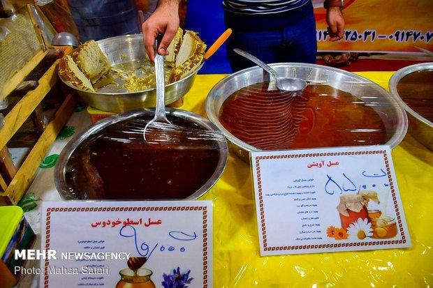 استقبال سرد از نمایشگاه یلدا در گلستان