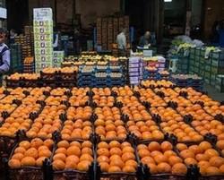افزایش غرفه توزیع میوه شب عید در مناطق کم برخوردار قزوین