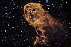 امکان تولید دی ان ای در فضا وجود دارد