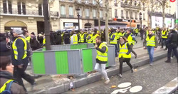 yellow vest movement