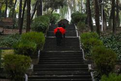 بیشترین بارندگیهای اخیردریاسوج با۱۵.۶ میلی متر/بارشها ادامه دارد