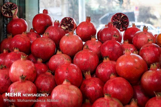 قیمت هر سبد یلدایی چقدر تمام می شود؟/عرضه گسترده انواع میوه