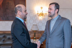 Iran ready to aid OFID in development projects in other countries: envoy
