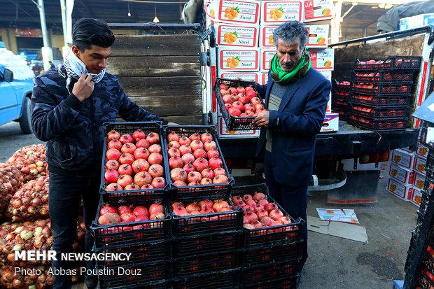 اختلالی درحملونقل میوه نداریم/قیمتها هیچگونه افزایشی نداشته است