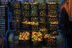 ۱۲۰ میدان و بازار میوه و تره بار استاندارد تشویقی دریافت کردند
