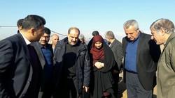 بازدید رئیس سازمان جهاد کشاورزی قزوین  از چند واحد تولیدی کشاورزی