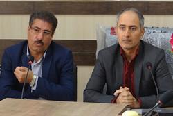 ۱۷۰ هزار تن گوجه فرنگی از مزارع استان بوشهر برداشت شده است