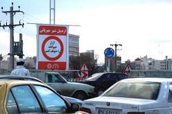 فرهنگسازی صیانت از حقوق حیوانات در اردبیل/سایهبان جانداران باشیم